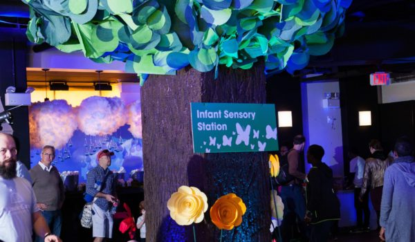 A look at the Infant Sensory Station installation